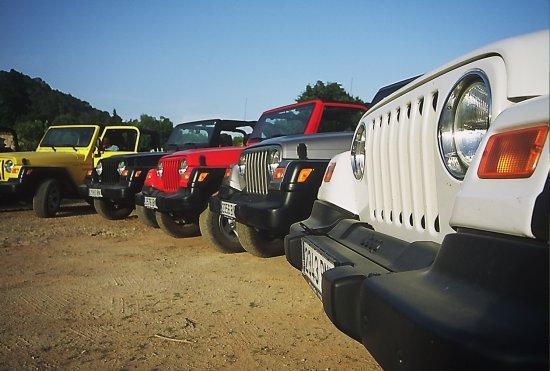 Jeep Rally